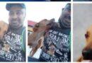 Perro callejero lo muerde y el decide adoptarlo